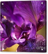 Getting Personal Acrylic Print