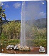 Geyser Napa Valley Acrylic Print by Garry Gay