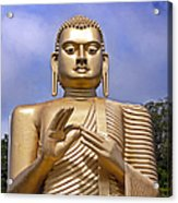 Giant Gold Bhudda Acrylic Print by Jane Rix