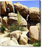 Giant Rocks Acrylic Print