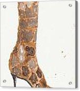 Giraffe Boot Acrylic Print