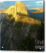 Glacier Point Tree Acrylic Print