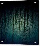 Glares Of Tree Stares Acrylic Print