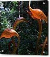 Glass Bulbs Acrylic Print