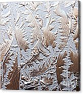 Glass Designs Acrylic Print