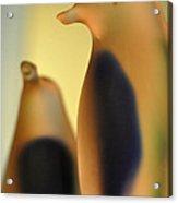 Glass Penguins Acrylic Print