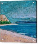 Glen Arbor Beach Acrylic Print by Lisa Dionne