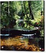 Glenleigh Gardens, Co Tipperary Acrylic Print