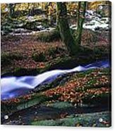 Glenmacnass Waterfall, Co Wicklow Acrylic Print