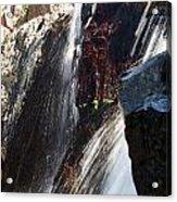 Glenn Alpine Falls Acrylic Print