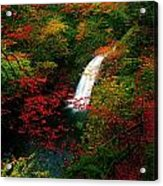 Glenoe Waterfall And Glen, Co Antrim Acrylic Print