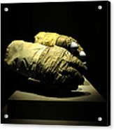 Gloves Of Apollo Acrylic Print