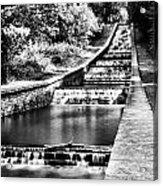 Gnoll Country Park 4 Mono Acrylic Print