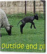 Go Outside And Play Acrylic Print
