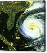 Goes 8 Satellite Image Of Hurricane Fran Acrylic Print by Science Source