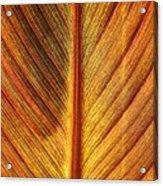 Gold Leaf Acrylic Print
