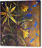 Gold Passions Acrylic Print