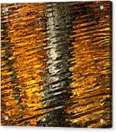 Gold Reflection Acrylic Print