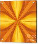 Golden 4 Leaf Clover  Acrylic Print