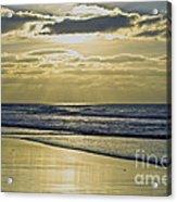 Golden Blue Acrylic Print