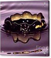 Golden Drop Acrylic Print