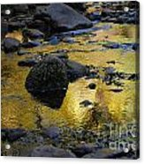 Golden Fall Reflection Acrylic Print