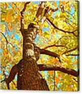Golden Green Acrylic Print