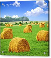Golden Hay Bales In Green Field Acrylic Print