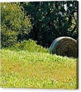 Golden Hay Day Acrylic Print