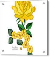 Golden January Rose Acrylic Print