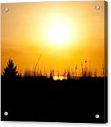 Golden Margarita Sunset Acrylic Print