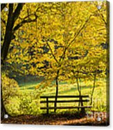 Golden October - Bench And Yellow Trees In Fall Acrylic Print