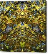 Golden Rorschach Acrylic Print