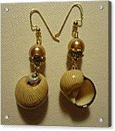 Golden Shell Earrings Acrylic Print