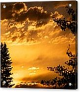 Golden Sky 2 Acrylic Print by Kevin Bone