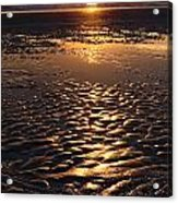 Golden Sunset On The Sand Beach Acrylic Print by Setsiri Silapasuwanchai