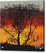Golden Sunset Over Circle B Bar Sandstone Acrylic Print