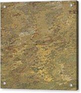 Goldtone Stone Abstract Acrylic Print