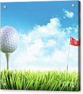 Golf Ball With Tee In The Grass  Acrylic Print