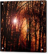 Good Day Sunshine Acrylic Print