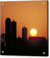 Goodoboy's Sunset Acrylic Print