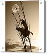 Goose At Dusk - Sepia Acrylic Print