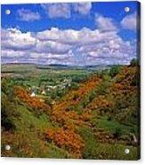Gortin Valley, Co Tyrone, Ireland Acrylic Print