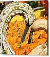 Gourd Heart Acrylic Print