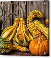 Gourds Against Wooden Wall Acrylic Print