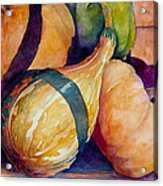 Gourds In The Fall Acrylic Print