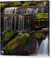Gracefully Flowing Acrylic Print