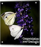 Graduation Congratulations Acrylic Print