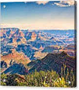 Grand Canyon - South Rim Acrylic Print