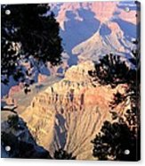 Grand Canyon 60 Acrylic Print